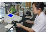 襄阳市东风人民医院|尿液分析仪URIT-500B.jpg