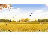 秋季健康生活小常识