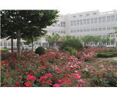 商丘市第一人民医院分院|